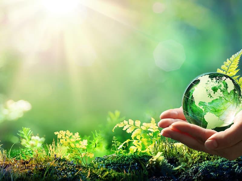 环境自动监测运维质控核查服务